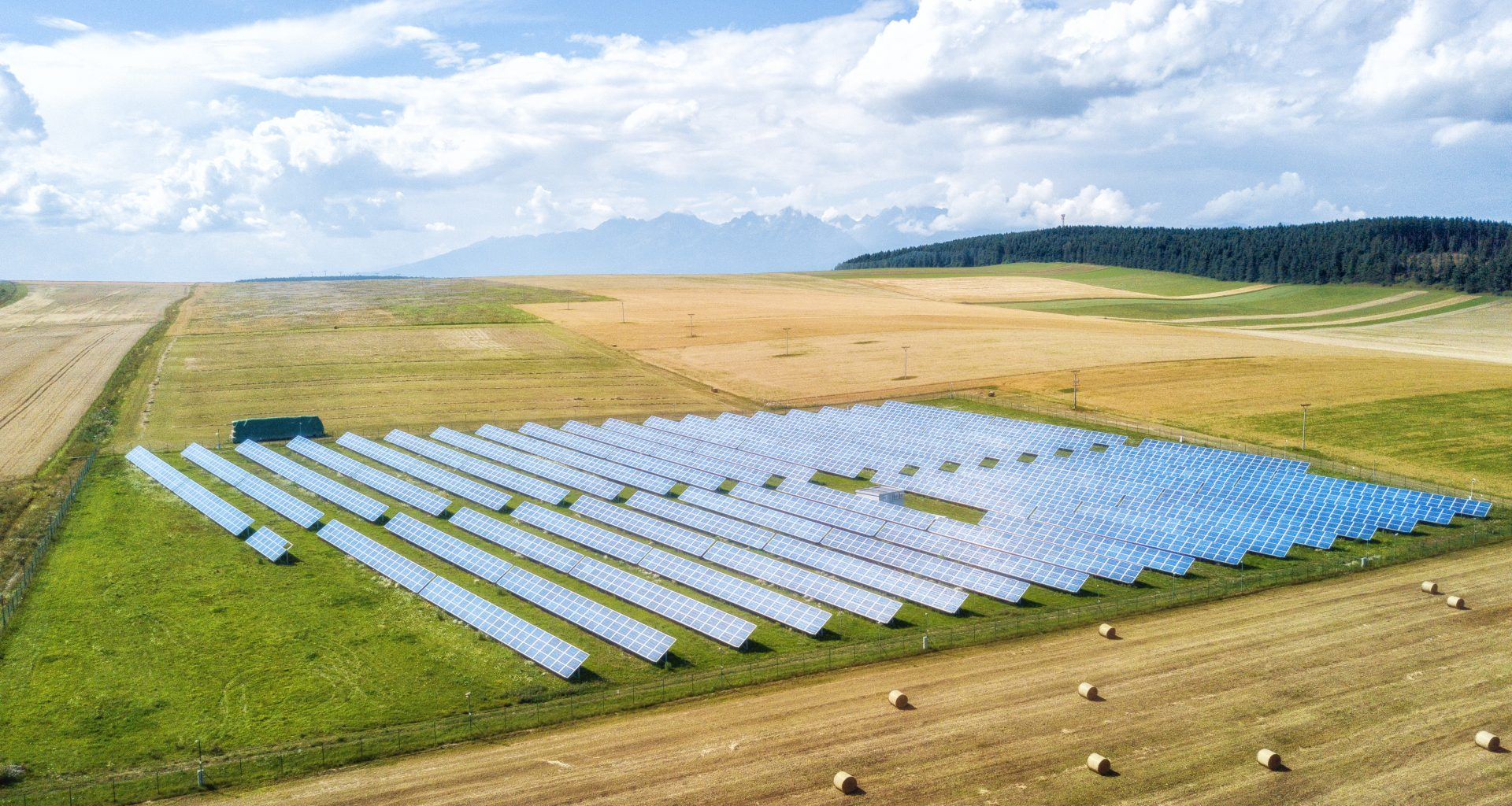 Managing solar parks for nature: delivering to the climate and ecological emergencies