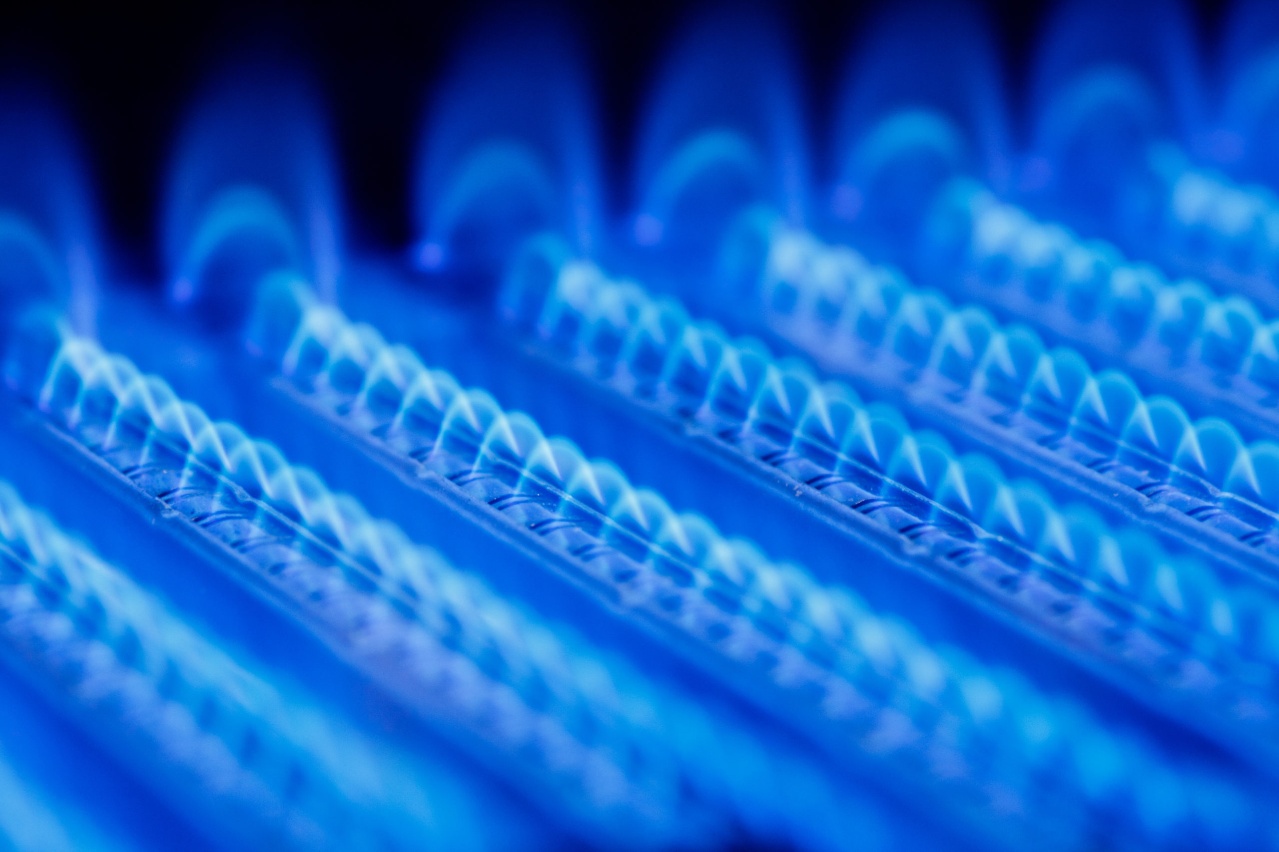 Report launch: Can natural gas be used without impacting climate change targets?