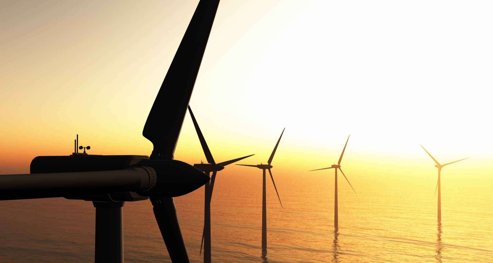 Blog: Net zero and net gain – The environmental challenges of upscaling marine renewables